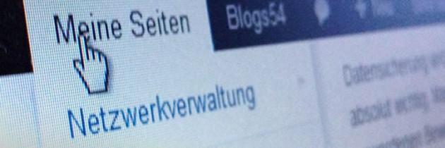 Echte Domains bei WordPress Netzwerk einrichten