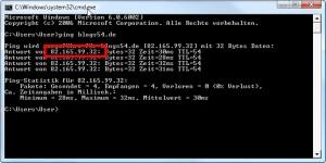 Ping auf die Domain setzen in der Eingabeaufforderung von Windows.
