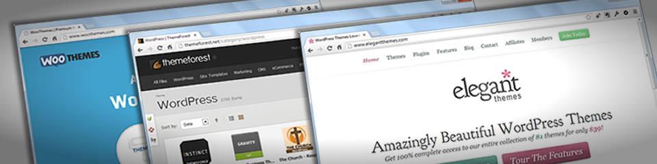 Erfahrungen mit WordPress Premium Themes [2020]