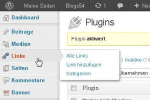 "Menü ""Links"" in der Admin-Navigation"