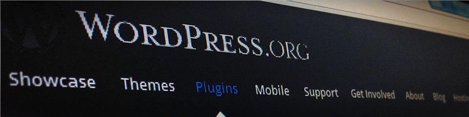 WordPress Fehlermeldung nach aktivieren einen Themes