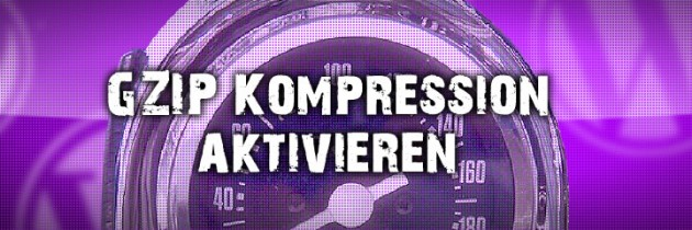 WordPress gZIP Kompression aktvieren