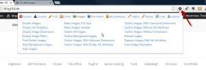 Web Developer für Chrome
