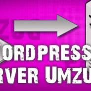 WordPress auf eine neue Domain übertragen. So geht's richtig.
