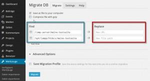 WP Migrate DB - Pfade eintragen